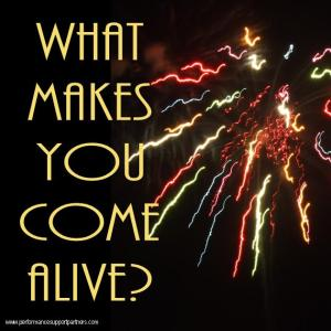 Performance Support Partners - What Makes You Come Alive